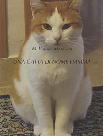 Una gatta di nome Fiamma